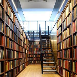 Библиотеки Дружной Горки