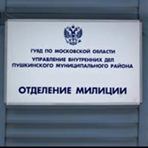 Отделения полиции Дружной Горки