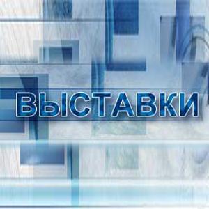 Выставки Дружной Горки